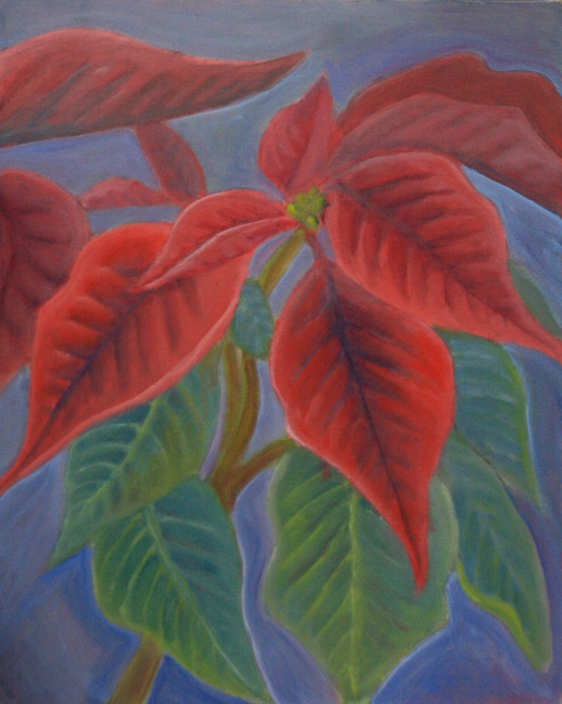 Poinsettias by Jason Campbell - acrylic on canvas
