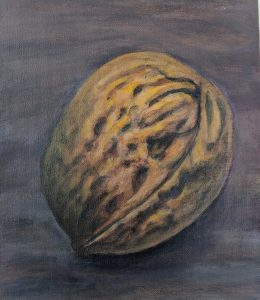 painting of a walnut